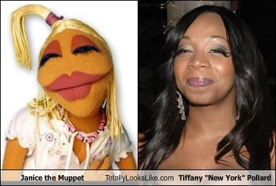 "Janice the Muppet Totally Looks Like Tiffany ""New York"" Pollard"