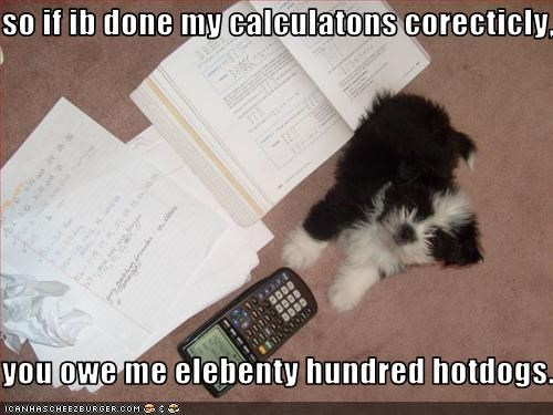 so if ib done my calculatons corecticly,  you owe me elebenty hundred hotdogs.