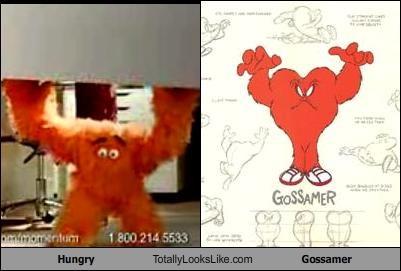 Hungry Totally Looks Like Gossamer