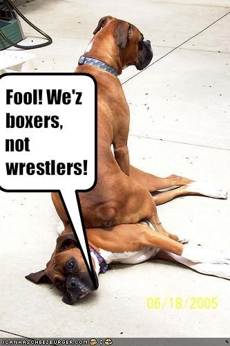 Fool! We'z boxers, not wrestlers!