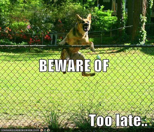 beware of dog,fence,german shepherd,murder,threats