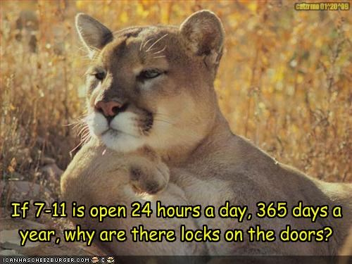 Confused Cougar Asks: