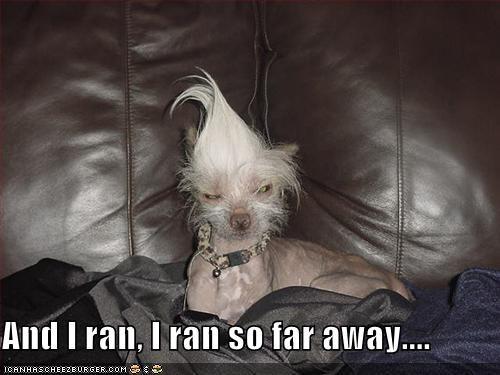 And I ran, I ran so far away....