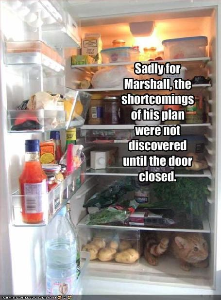 Sadly for Marshall, the shortcomings of his plan were not discovered until the door closed.