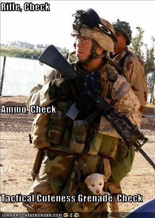 Rifle, Check Ammo, Check Tactical Cuteness Grenade, Check
