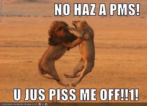 NO HAZ A PMS!  U JUS PISS ME OFF!!1!