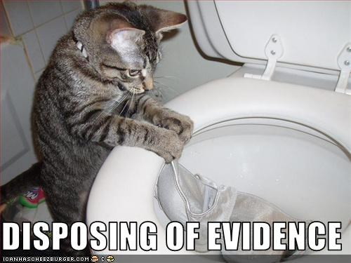 DISPOSING OF EVIDENCE