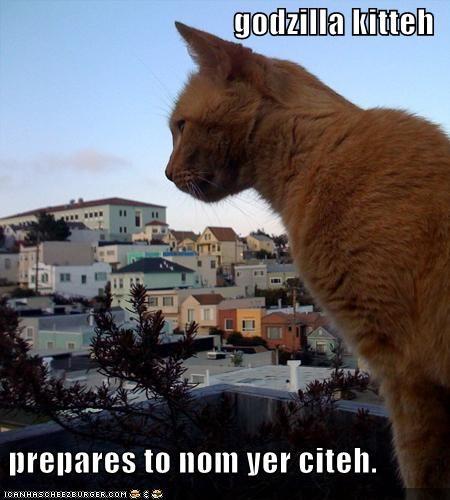 godzilla kitteh   prepares to nom yer citeh.