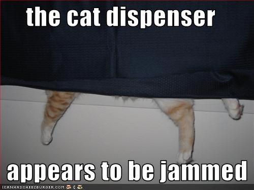 the cat dispenser     appears to be jammed