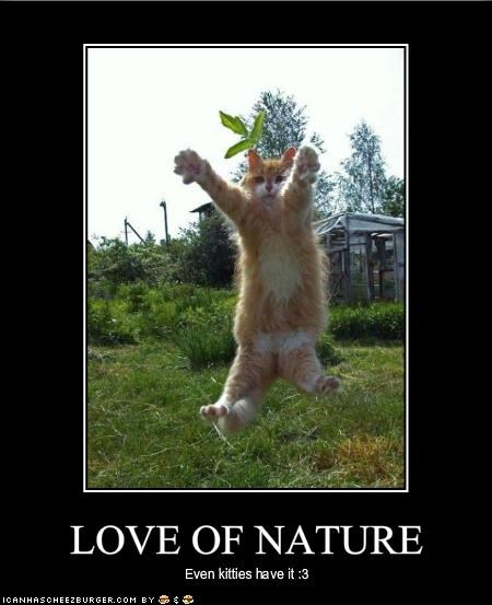 LOVE OF NATURE