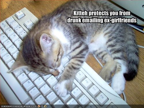 Kitteh protects you from