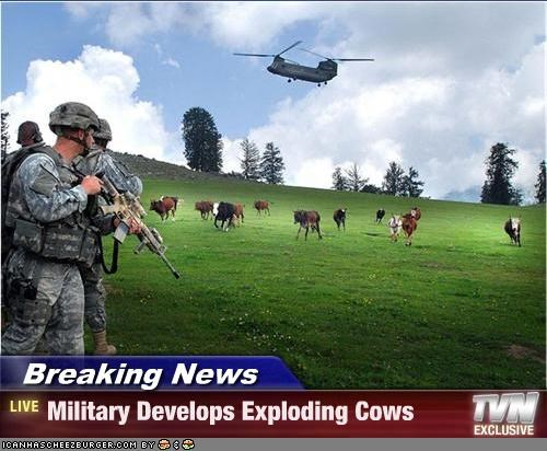 Breaking News - Military Develops Exploding Cows