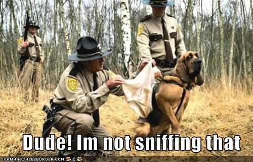 Dude! Im not sniffing that