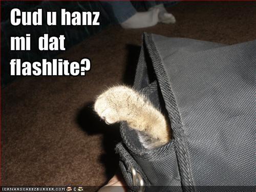 Cud u hanz mi  dat  flashlite?