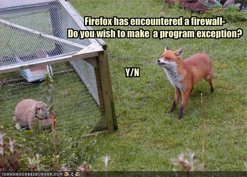 Firefox has encountered a firewall-
