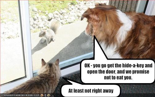OK - you go get the hide-a-key and open the door, and we promise not to eat you.