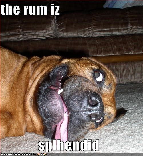 the rum iz  splhendid