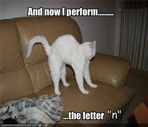And now I perform.........