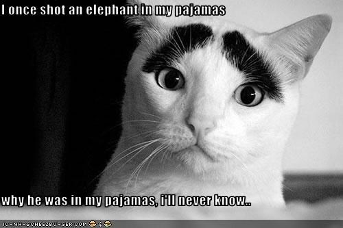 I once shot an elephant in my pajamas  why he was in my pajamas, i'll never know..