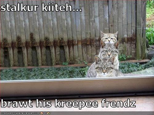 stalkur kiiteh...  brawt his kreepee frendz