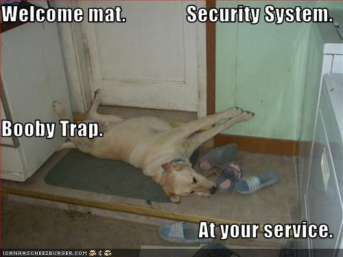 Welcome mat.               Security System. Booby Trap. At your service.