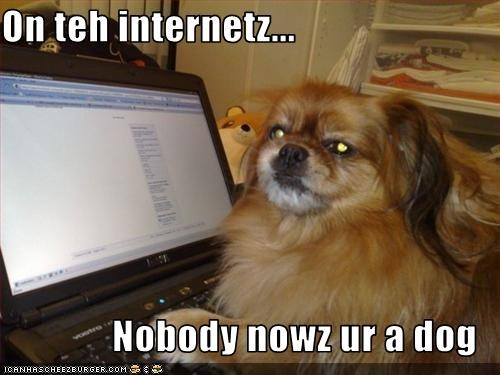 On teh internetz...  Nobody nowz ur a dog