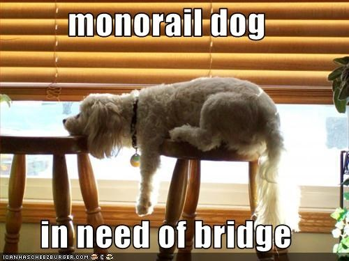 monorail dog  in need of bridge