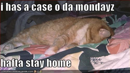 i has a case o da mondayz  hafta stay home
