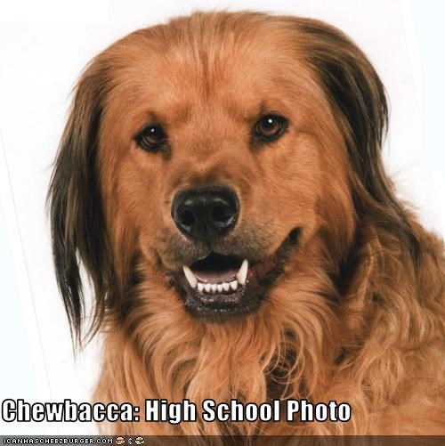 Chewbacca: High School Photo