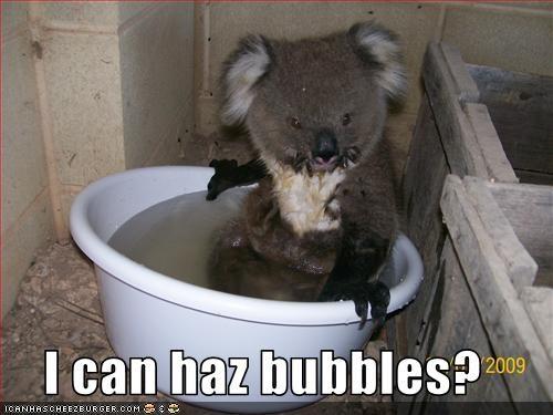 I can haz bubbles?