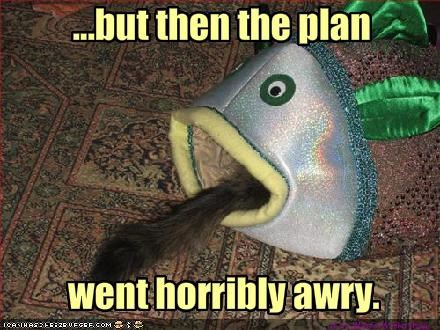 lolfish,nom nom nom,oh noes,plan