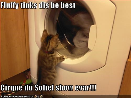 Fluffy tinks dis be best  Cirque du Soliel show evar!!!