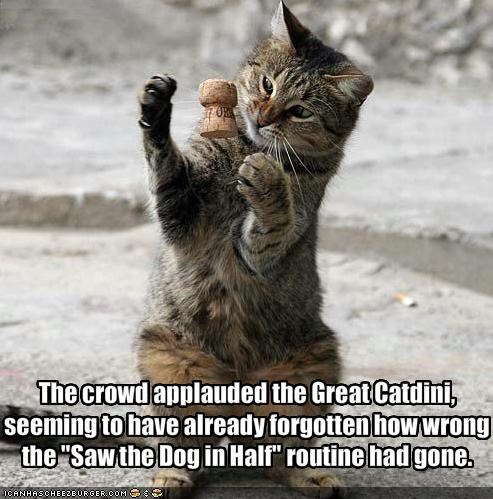 The crowd applauded the Great Catdini, 