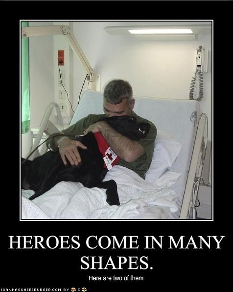 HEROES COME IN MANY SHAPES.