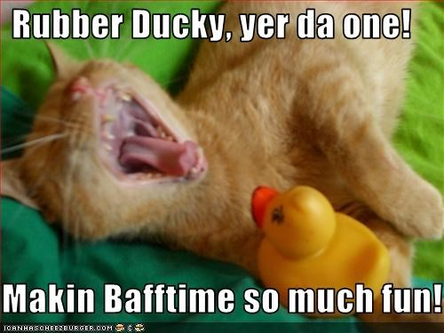 Rubber Ducky, yer da one!  Makin Bafftime so much fun!