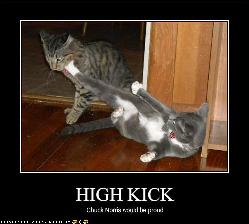 chuck norris,kick,ninja