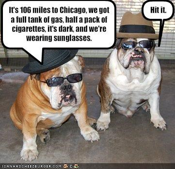 It's 106 miles to Chicago, we got a full tank of gas, half a pack of cigarettes, it's dark, and we're wearing sunglasses.