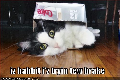 iz habbit i'z tryin tew brake