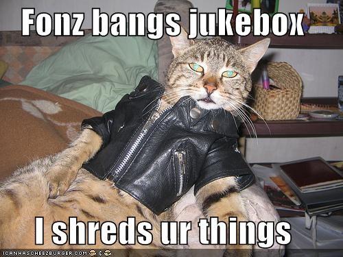 Fonz bangs jukebox  I shreds ur things
