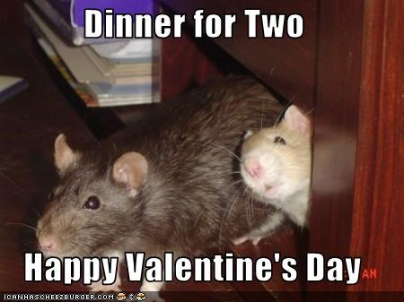 Dinner for Two  Happy Valentine's Day