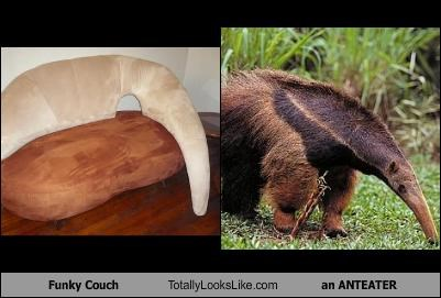 Funky Couch Totally Looks Like an ANTEATER