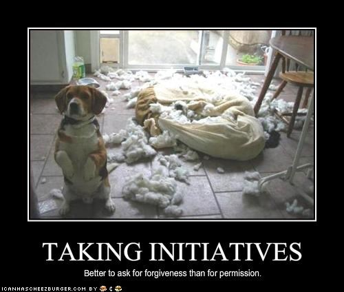 TAKING INITIATIVES