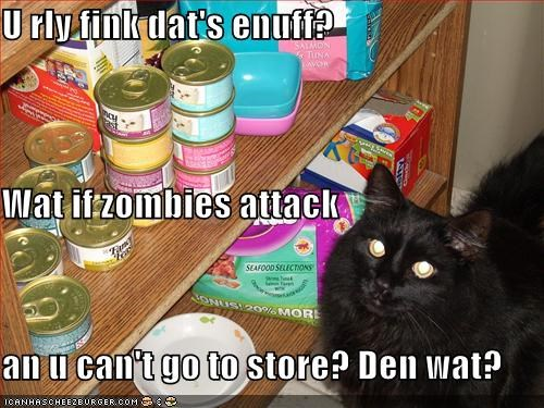 U rly fink dat's enuff? Wat if zombies attack an u can't go to store? Den wat?