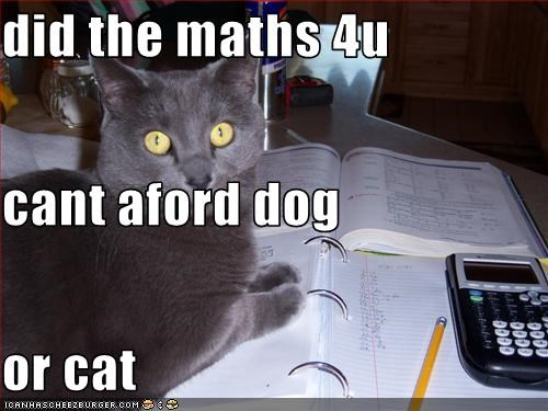 did the maths 4u cant aford dog or cat