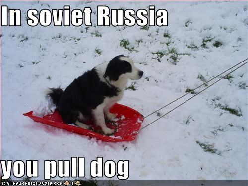 In soviet Russia   you pull dog