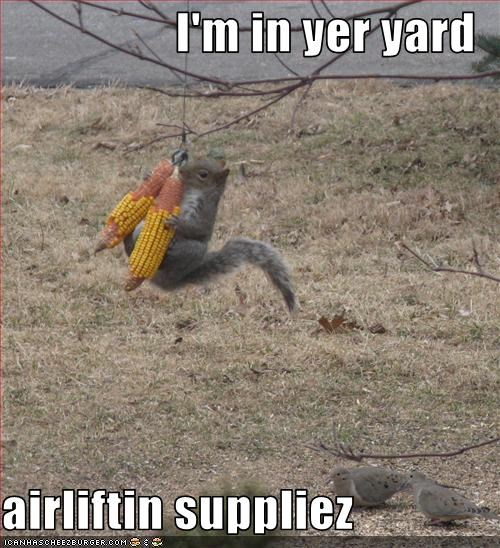 I'm in yer yard  airliftin suppliez