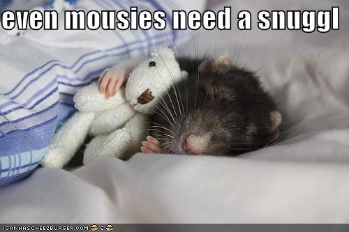 even mousies need a snuggl