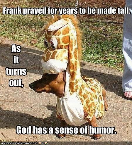 Frank prayed for years to be made tall.