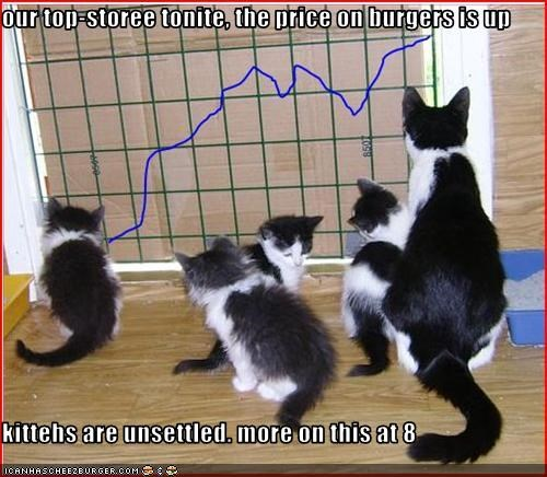 our top-storee tonite, the price on burgers is up   kittehs are unsettled. more on this at 8