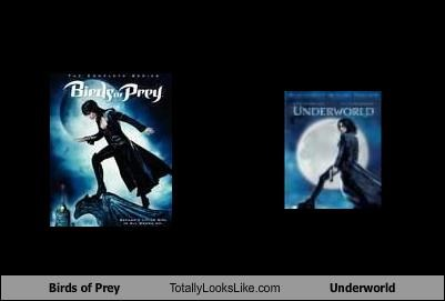 Birds of Prey Totally Looks Like Underworld